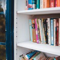 anna-levkovich-books
